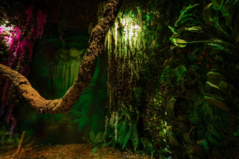 Juman Jungle 2 - HouseTrap Jumanji
